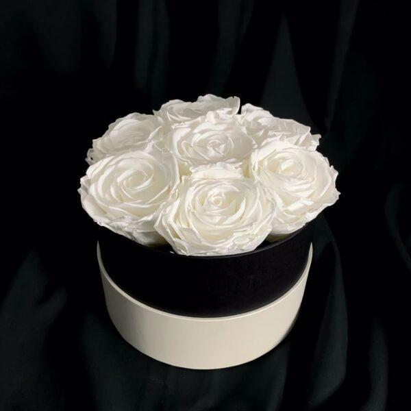 Rose stabilizzate White Allure
